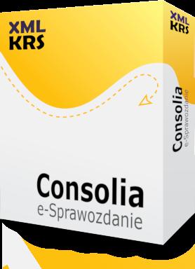 e-sprawozdanie 2019 do KRS w formacie XML